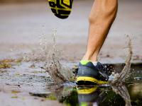 15 Marathons in 2015