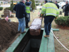 Unearthing the dead